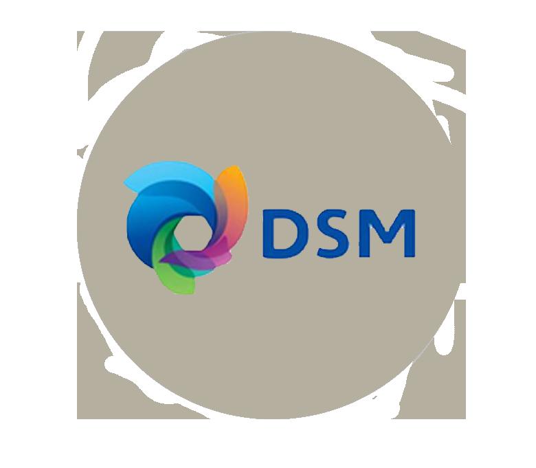 dsm-3